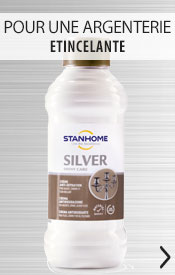 Silver Expert Stanhome