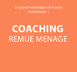 Coaching Remue Menage